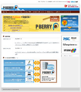 P-BERRYのWEBデザイン