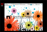 First Flash ForwardのWEBデザイン